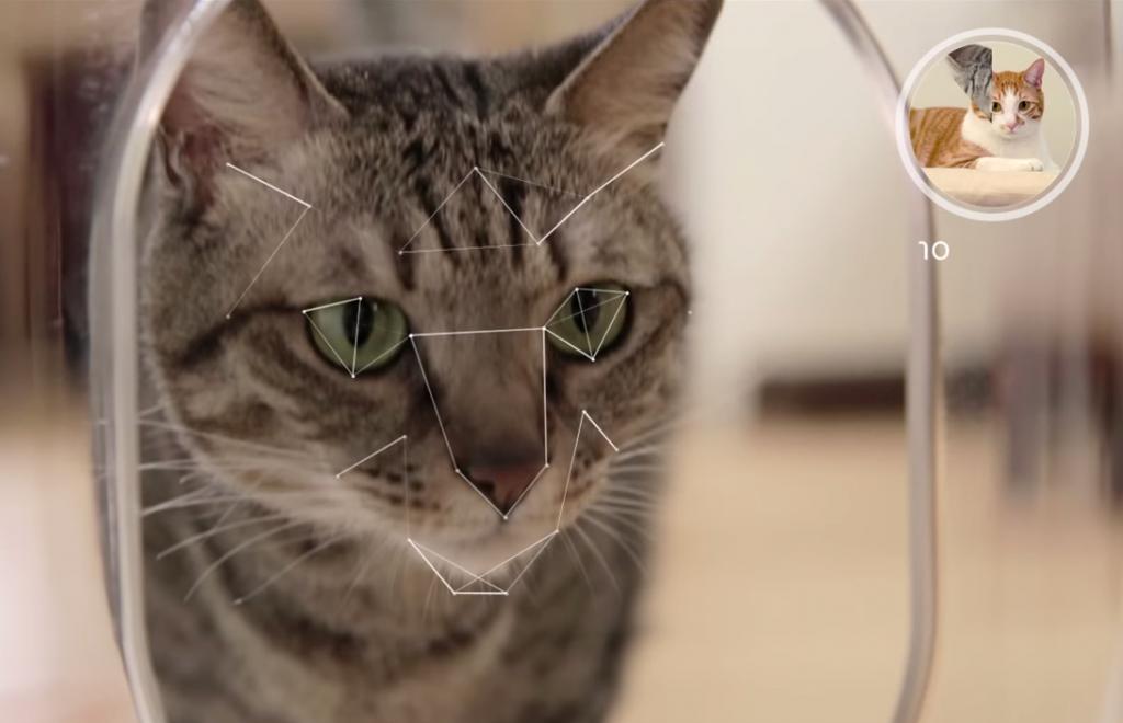 大手メディアも注目!ペットの顔まで認識する最新猫用餌やり機「Bistro」
