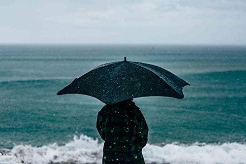 傘のイメージ
