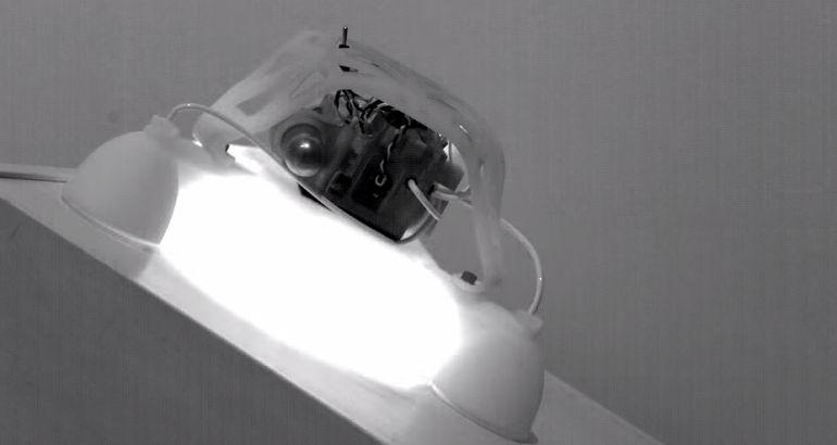 ハーバード大学とカリフォルニア大学開発のピョンピョン飛ぶロボットがセミソフト系