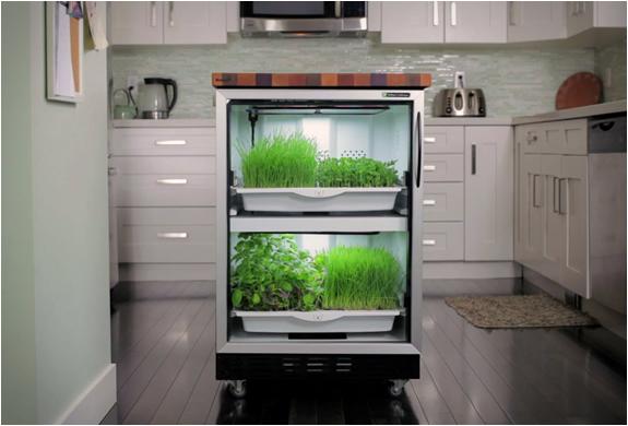 いつでもオーガニック野菜が食べられる!全自動ビルトインキッチンガーデン「URBAN CULTIVATOR」