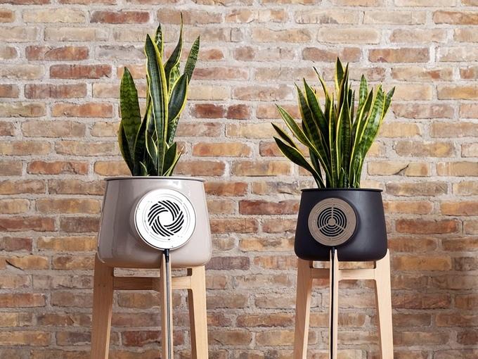 """""""100%天然""""空気清浄機!植物の本来の力で空気をきれいにしてくれる「Clairy」"""