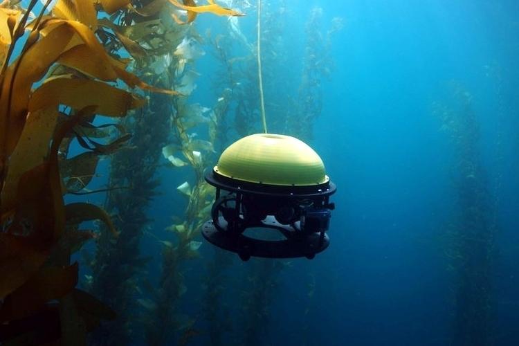 水中ドローンのほうがオモシロい!100m潜れる「SeaDrone」が本格的