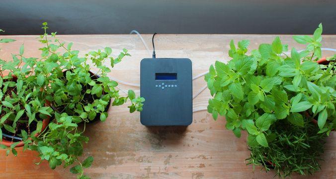 最大10鉢まで!植物に合わせて水やりできるハイテク自動潅水器なら忙しい人も安心