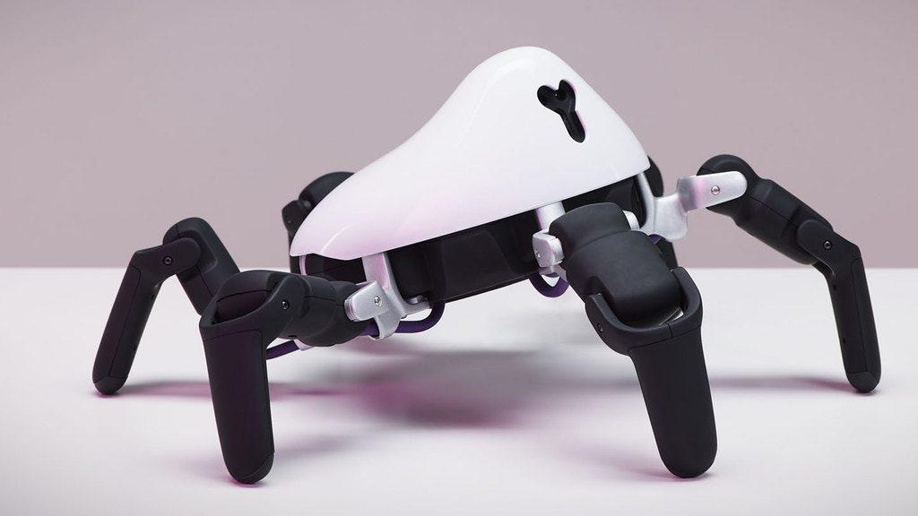 秋の夜長はロボット遊び!足の動きが超リアルなプログラミング対応クモ型ロボット