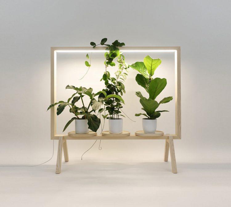 ありきたりな空間をグリーンの楽園に。植物を飾って育てる「GreenFrame」