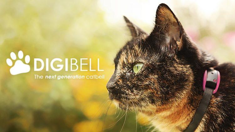 猫の狩猟本能を察知するスマート首輪「Digibell」。衛生面もこれで安心