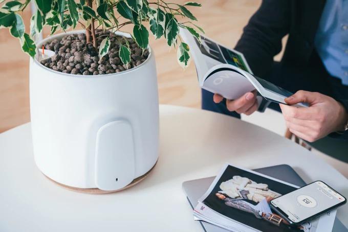 観葉植物の力を使ったIoT空気清浄機「NATEDE」。インテリアにもピッタリ