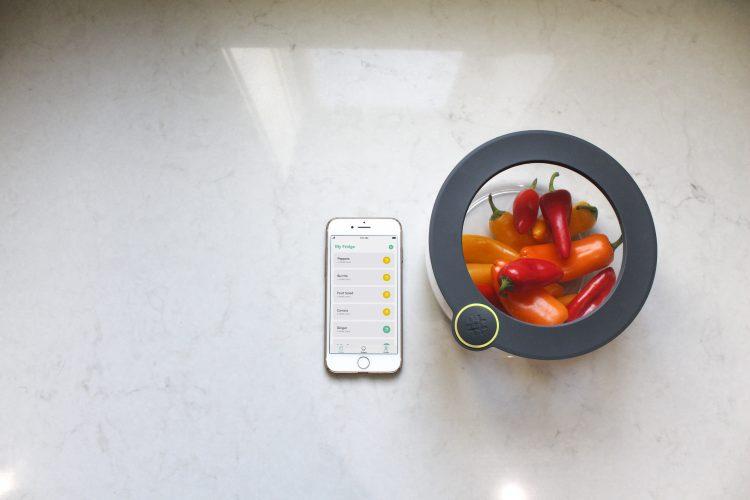 Alexaと連携して食品ロスを減らすスマートシステム「Ovie Smarterware」