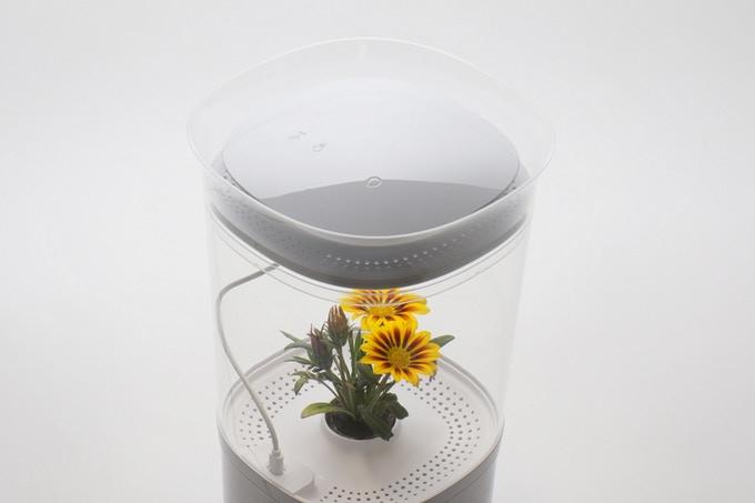 花の世話が全自動!インテリアとしてもおしゃれな屋内プランター「Bloomengine」