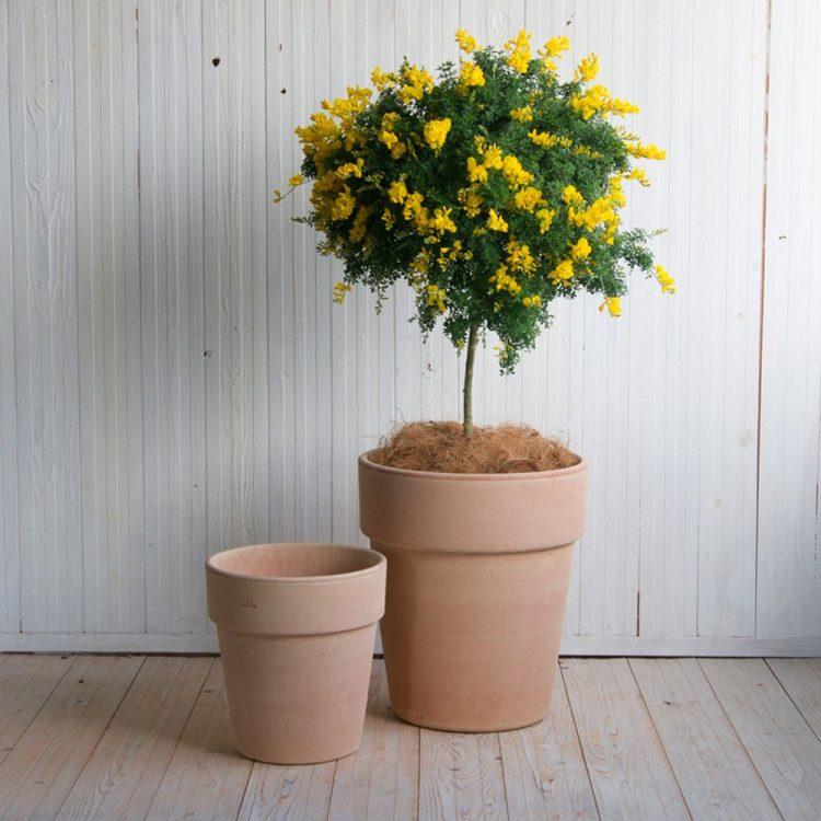 おしゃれな植木鉢おすすめ15選。サイズの選び方なども合わせてご紹介