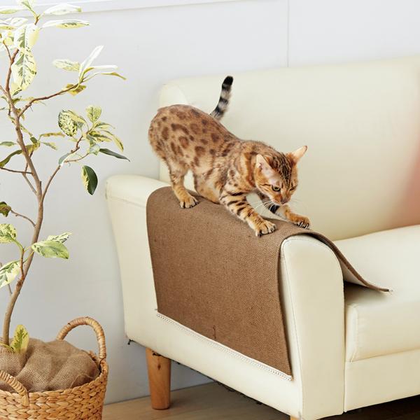 猫用爪とぎのおすすめ15選。人気の麻や段ボール素材もご紹介