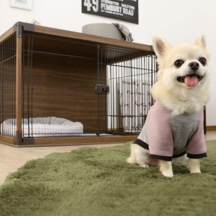 小型犬ケージのおすすめ15選。持ち運びできるモデルもご紹介
