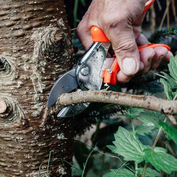 剪定ばさみのおすすめ14選。庭のお手入れに大活躍