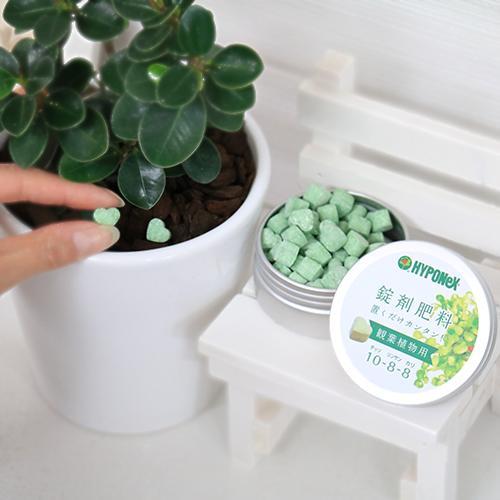 固形肥料のおすすめ10選。使いやすい製品をピックアップ