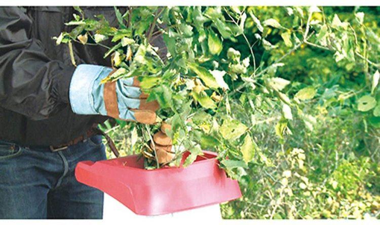 ガーデンシュレッダーのおすすめ10選。庭をきれいに手入れしたい方は必見