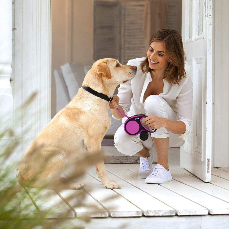 犬用リードのおすすめ15選。愛犬の大きさやシーンで選ぼう