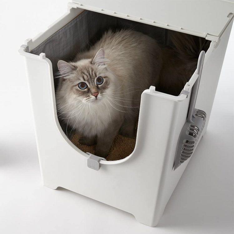 猫トイレのおすすめ24選。臭わず清潔に使いやすい人気アイテムをご紹介